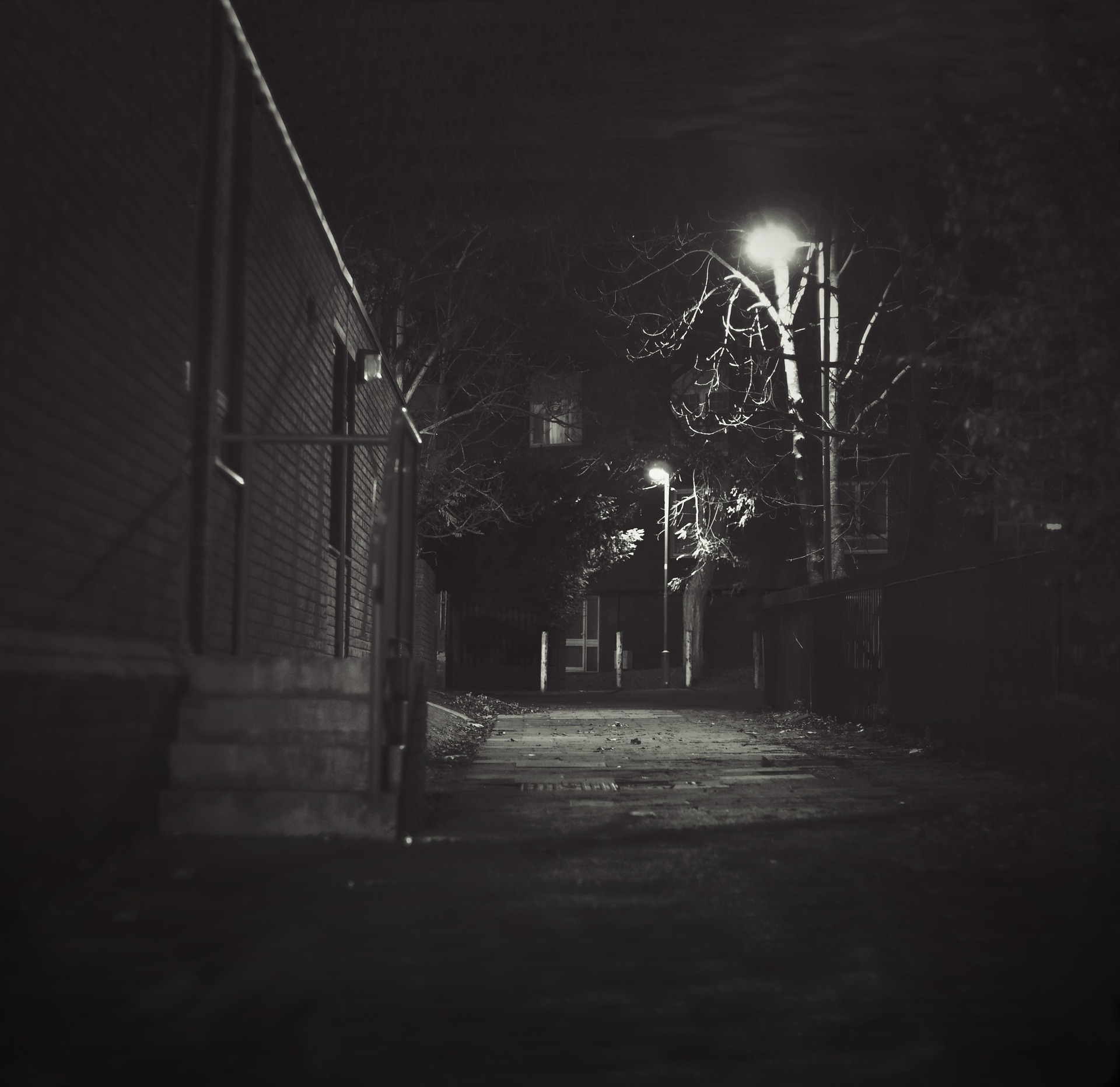 night-434244_1920